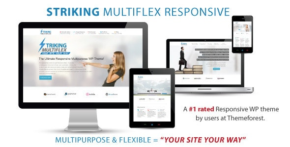 Striking wordpress theme sold on themeforest